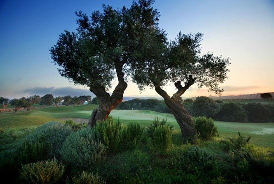 Golf breaks at The Romanos, Costa Navarino, Greece. GRD Rating: 8.6